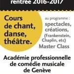 AUDITIONS pour la formation professionnelle de comédie musicale