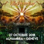 HILIGHT TRIBE/Trance
